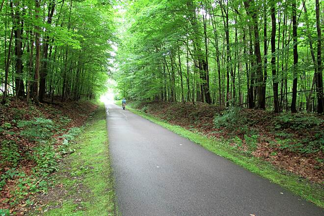 MetroParks Bikeway Nice flat trail Flat asphalt paved trail goes through a wooded area. Provides shade on a 