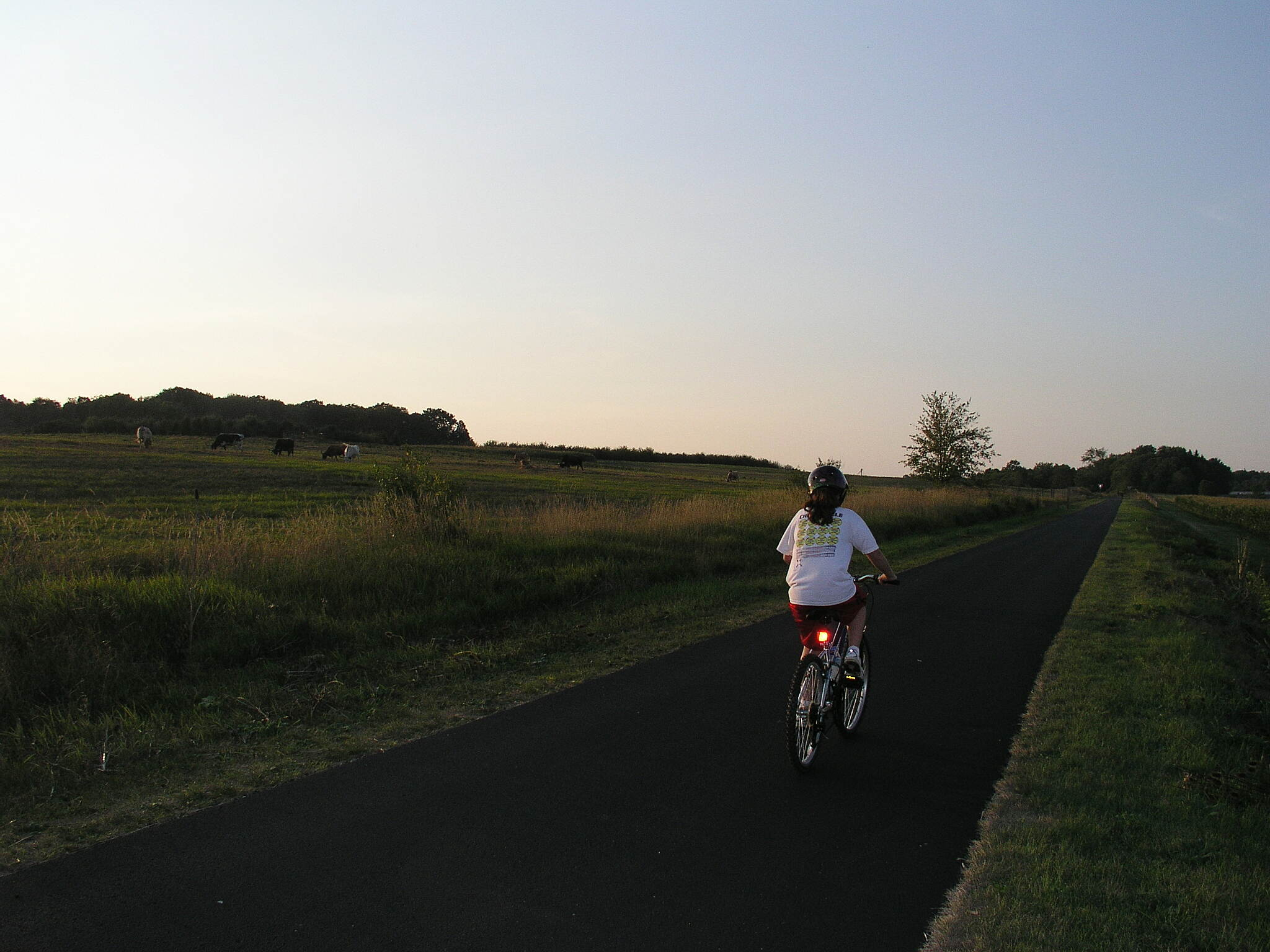 MetroParks Bikeway Dusk Also at the Metroparks Farm.