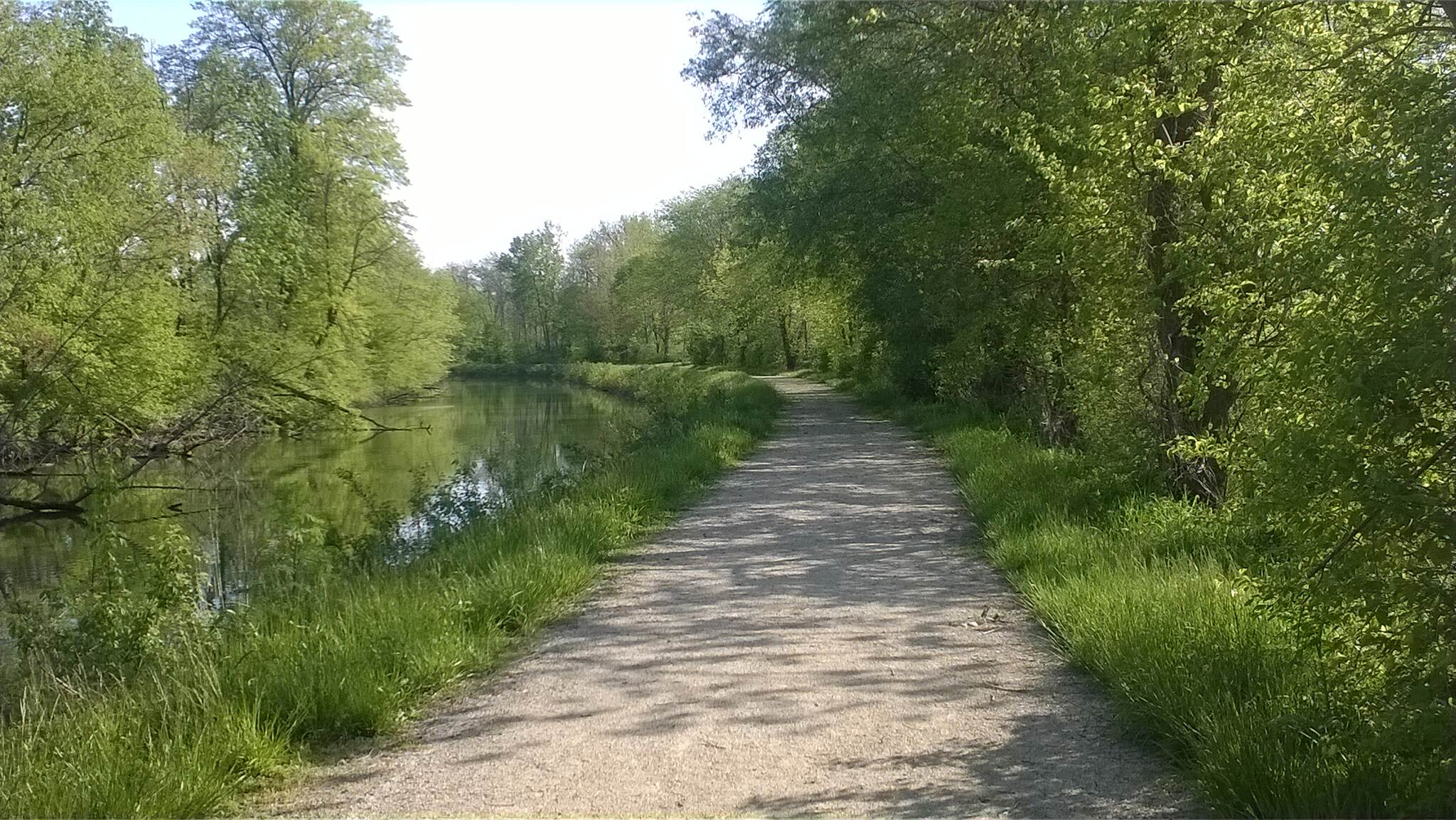 Miami & Erie Canal Towpath Along the Canal Southbound view of the trail north of St. Mary's.  May, 2014