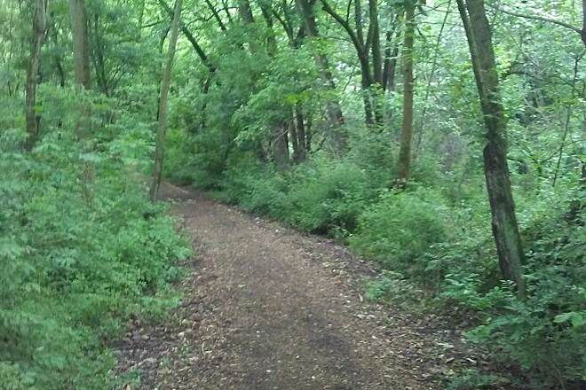 Mill Creek Trail (PA) Mill Creek Trail Heading into the lush woods in springtime. Taken May 2017.