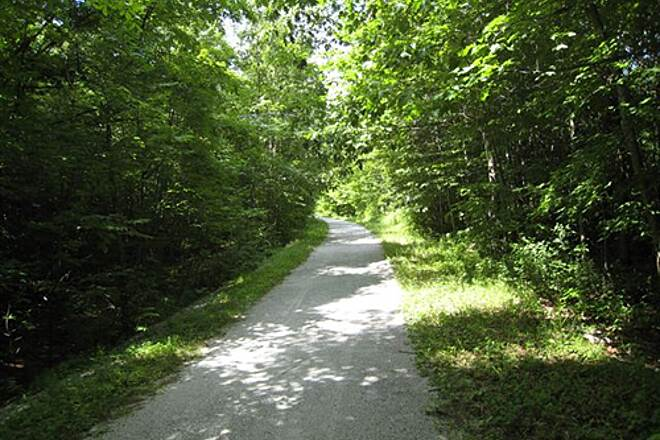 Missisquoi Valley Rail-Trail Wooded trail Typical shaded section of trail