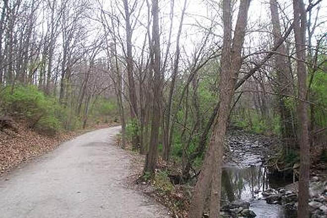 MKT Nature and Fitness Trail   The creek almost looks good enough to drink from.