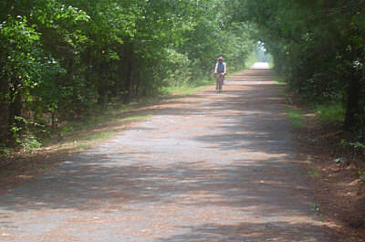 Moultrie Trail Southern part of the trail This is typical of the first mile of the trail, a green tunnel through rural landscapes.