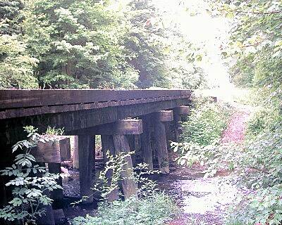Muhlenberg County Rail-Trail Trestle Just south of Central City, looking south.