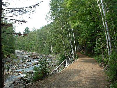Narrow Gauge Pathway Narrow Gauge Trail This is the newly resurfaced trail along the Carrabassett River.