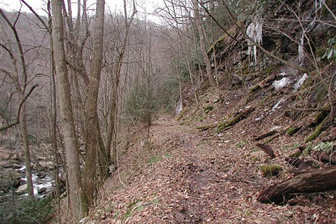 Narrow Gauge Trail (WV)