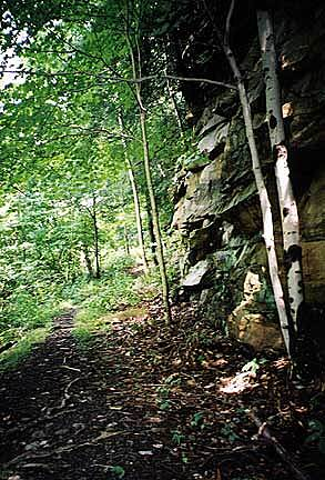 Narrow Gauge Trail (WV) Aptly Named Riders or hikers must squeeze through this portion of the aptly named Narrow Guage Trail with a cliff on one side and a steep drop-off on the other.