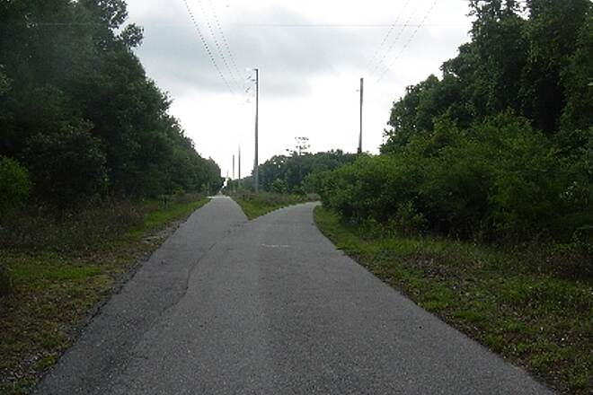 Nature Coast State Trail Cross City and Trenton Split Left to Cross City and Right to Trenton