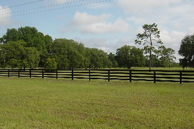 Nature Coast State Trail Farms along US 19 About 5 miles South of Cross City