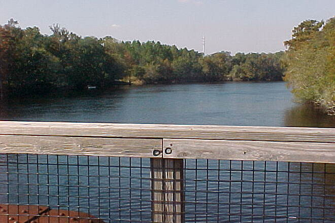 Nature Coast State Trail Suwannee River from bridge