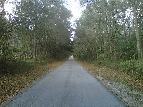 Nature Coast State Trail Smooth Ride outside of Chiefland Smooth Ride