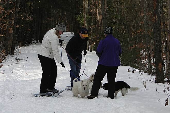 New Boston Rail Trail Snowshoeing The New Boston Rail Trail - you can snowshoe the trail along with your four-legged friends.