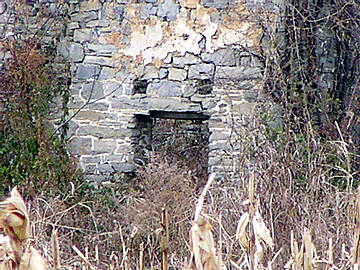 Nor-Bath Trail Fort Allen-Brown  A close-up taken from the trail.