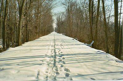 North Coast Inland Trail (Huron County) Trail for all seasons: A fresh blanket of snow on the NCIT is the perfect place for winter walks or cross country skiing.  Photo by: Stan Bernhardt