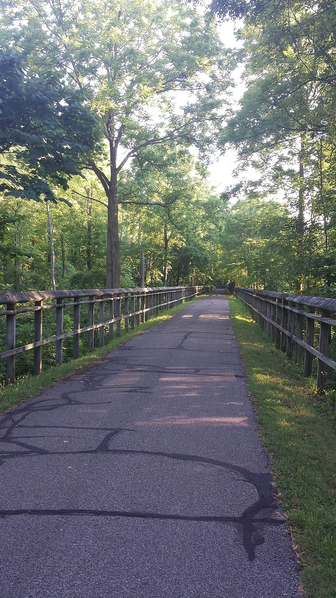 North Coast Inland Trail (Lorain County) Sun reflecting through the trail by Clark.