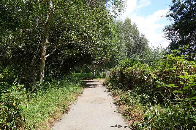 North Creek Trail Canyon Park spur trail Spur trail at Canyon Park Wetlands is on a loop leading back to 228th St. S.E. in Bothell.