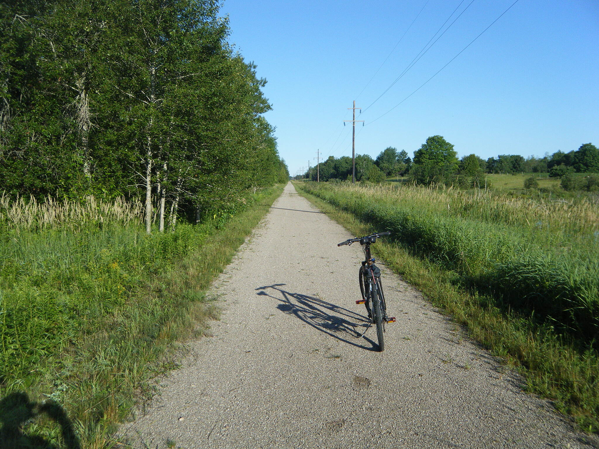 North Eastern State Trail West of Posen Beautiful July day.  Saw lot's of Deer, great ride from Posen to Millersburg.