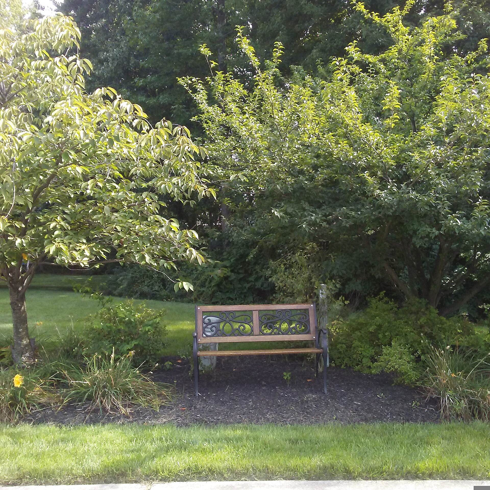 Northern Delaware Greenway Trail Northern Delaware Greenway The owners of a home along Weldin Ridge Drive capitalized on their proximity to the trail by installing this ornate bench, complete with trees and decorative landscaping.