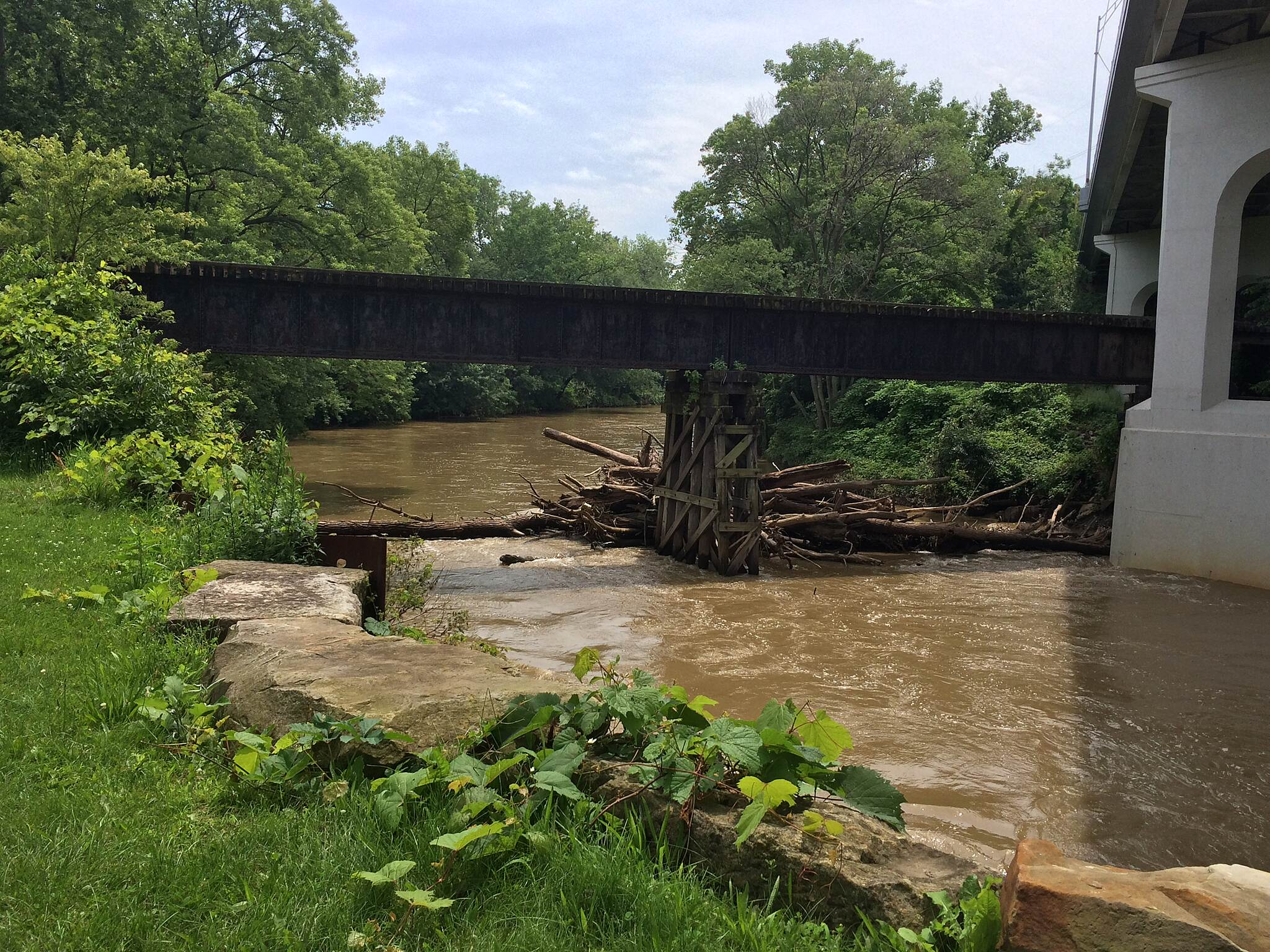 Ohio & Erie Canal Towpath Trail Log Jam Lots of debris getting caught after the storms in June/July 2015