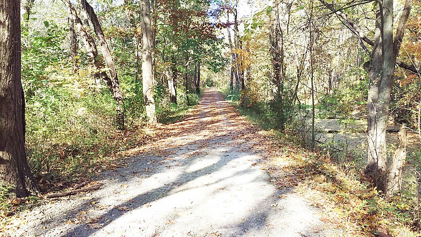 Ohio & Erie Canal Towpath Trail Northbound Oct 2016 Massillon to Clinton, remains of canal are on the right