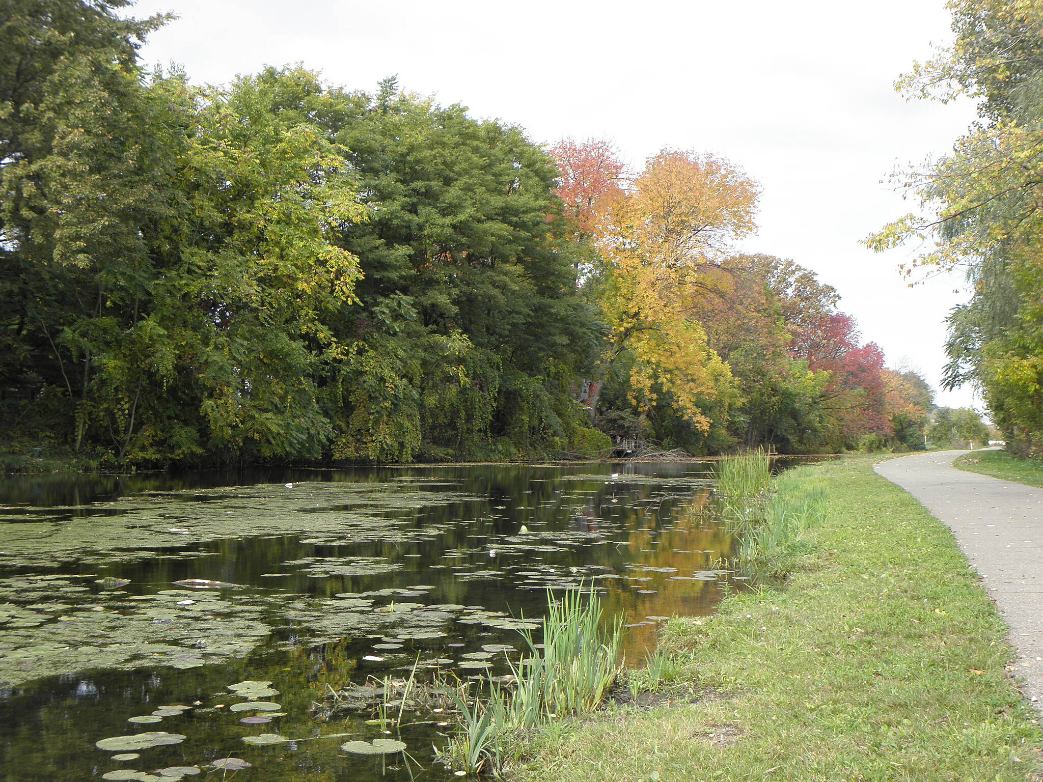 Ohio & Erie Canal Towpath Trail Fall colors on the canal Early October