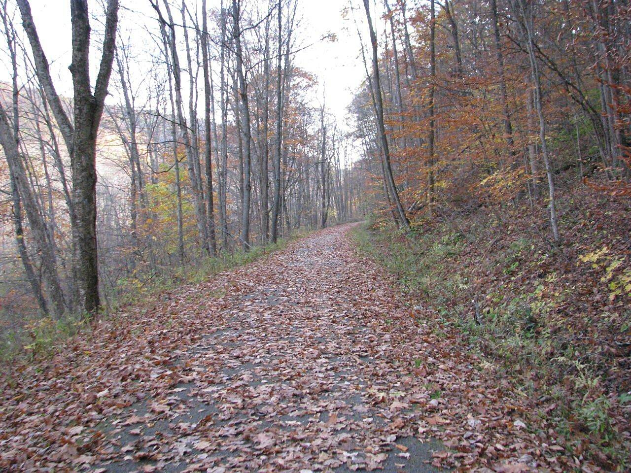 Oil Creek State Park Trail Fall is in the air! Fall along the trail