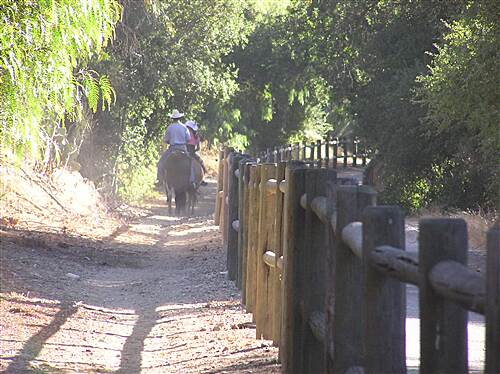 Ojai Valley Trail