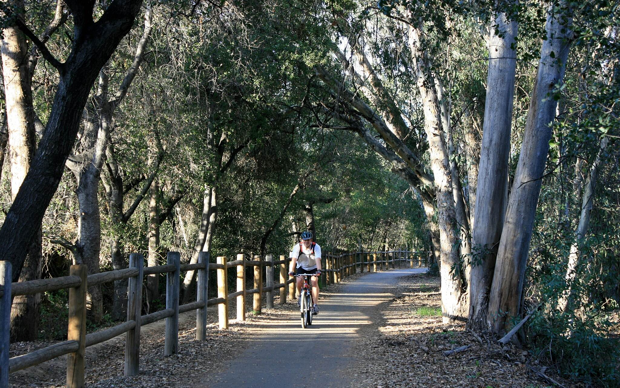 Ojai Valley Trail On the Ojai Valley Trail