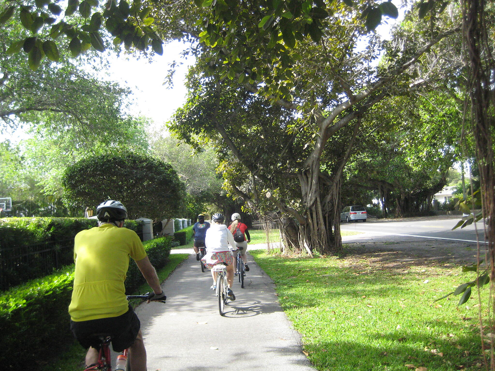 Old Cutler Trail A ride through a tree-lined neighborhood in Coral Gables.