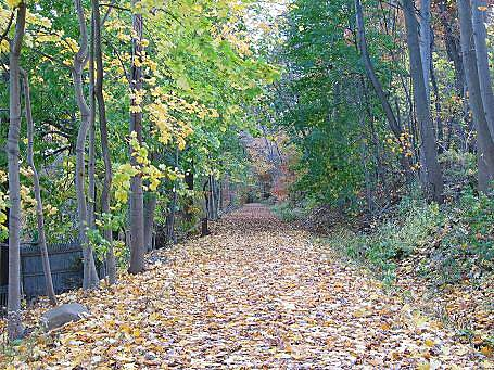 Old Erie Path Old Erie Path Grandview-On-Hudson trail conditions in autumn.
