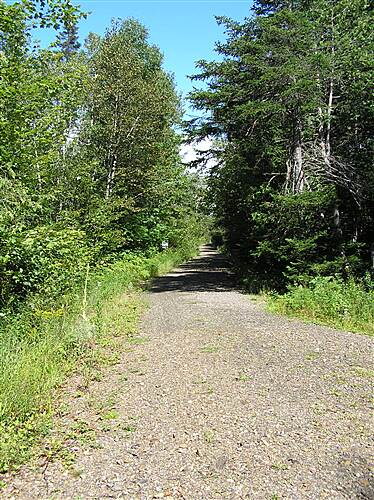 Old Narrow Gauge Volunteer Trail