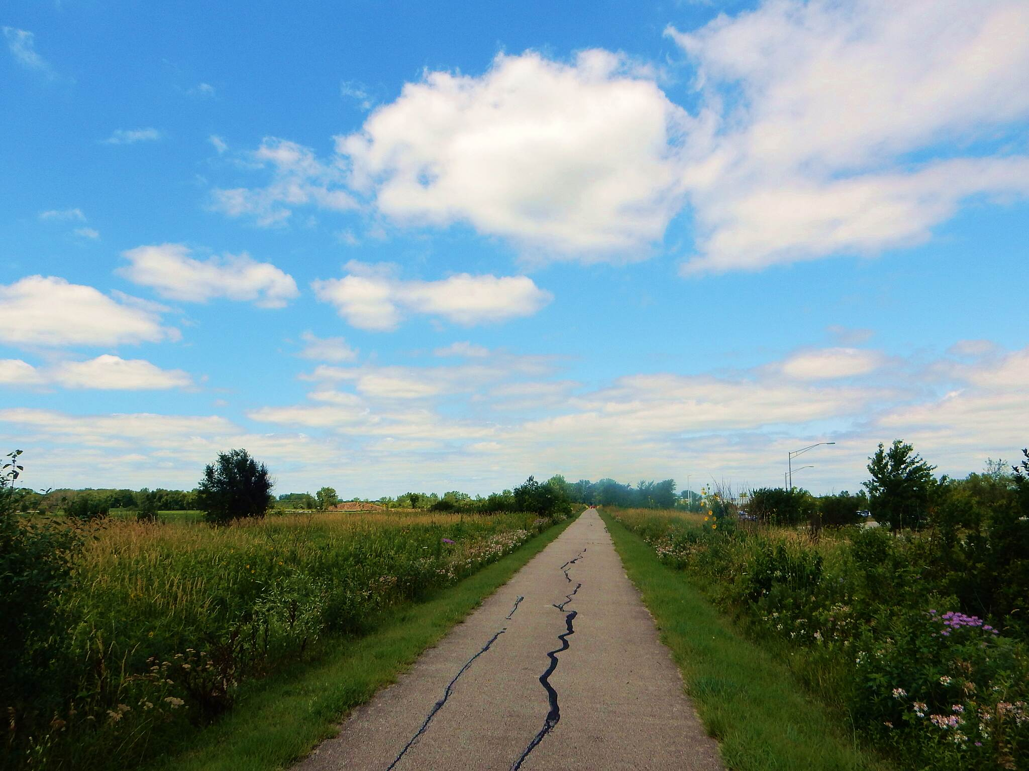 Old Plank Road Trail Straight as a plank. Very straight, smooth, paved trail. Taken 7-14-17.
