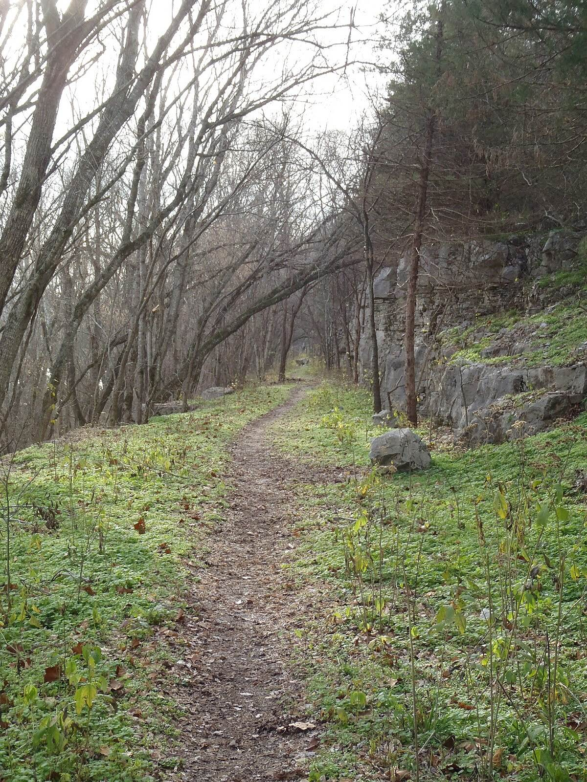 Old Railroad Trail (Gilbert) Railroad Trail The view along the old Railroad Trail.  More details on this hike and other trails in Arkansas can be found at trailsofarkansas.blogspot.com