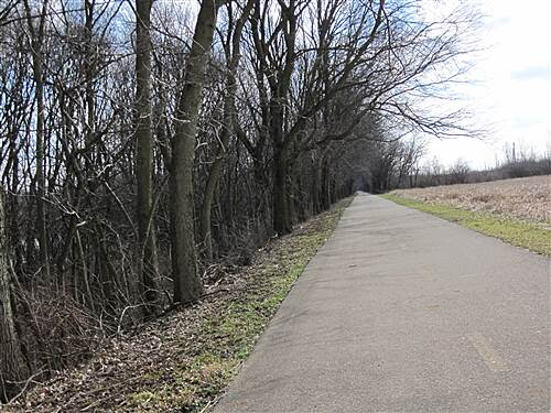 Olentangy Trail It is a very diversified trail, you get is all on this trail, this is one of the nice straight aways.