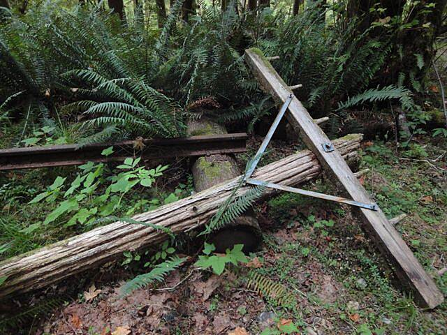 Olympic Discovery Trail - Spruce Railroad Trail Remnants of the railway on Lake Crescent