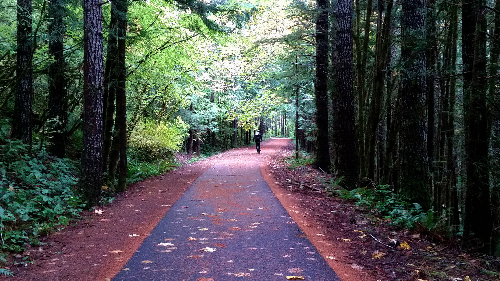 Olympic Discovery Trail - Spruce Railroad Trail Above Lake Crescent A gentle grade through a beautiful forest