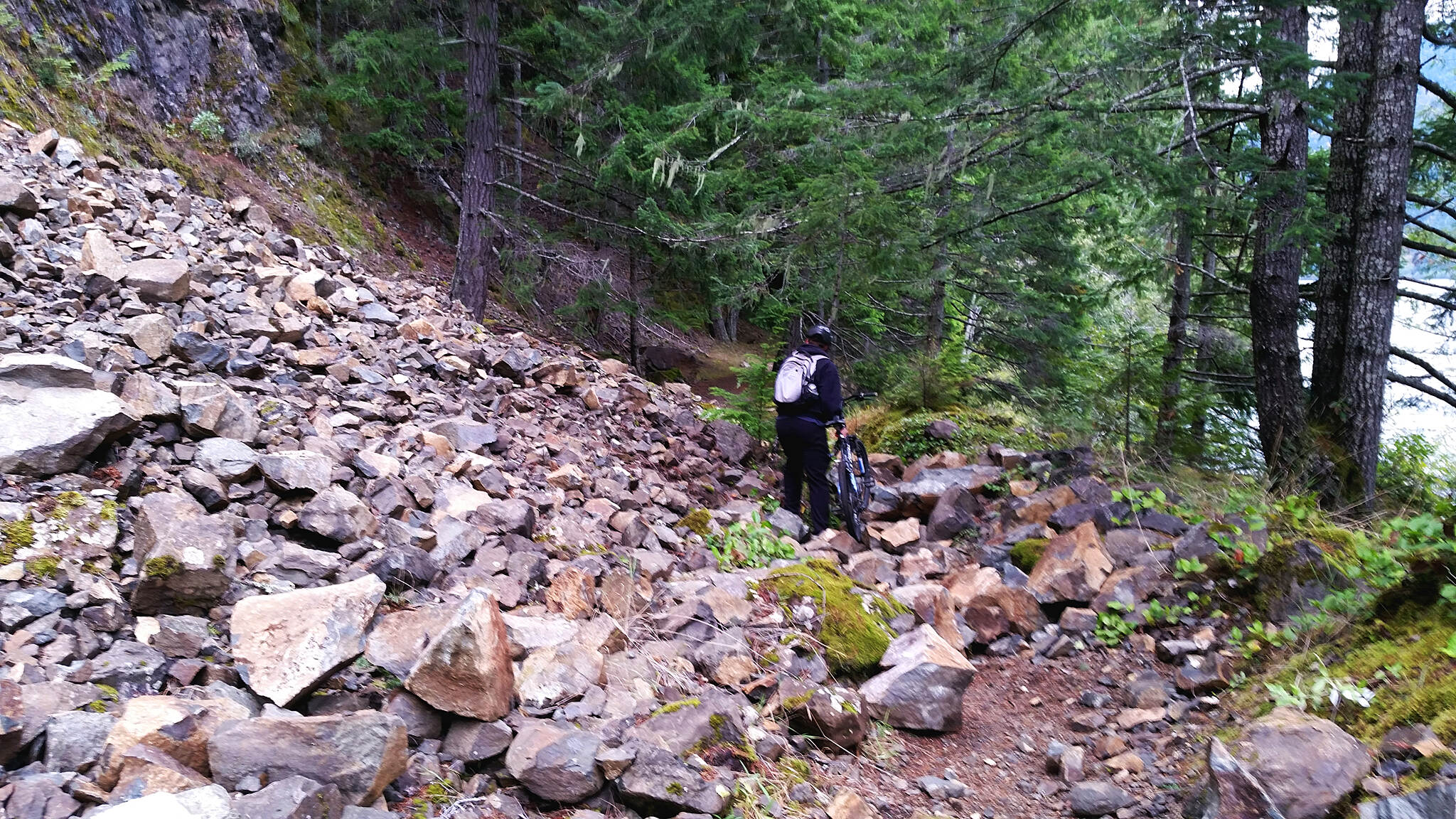 Olympic Discovery Trail - Spruce Railroad Trail Trail? The worst of it, and it was only a short carry