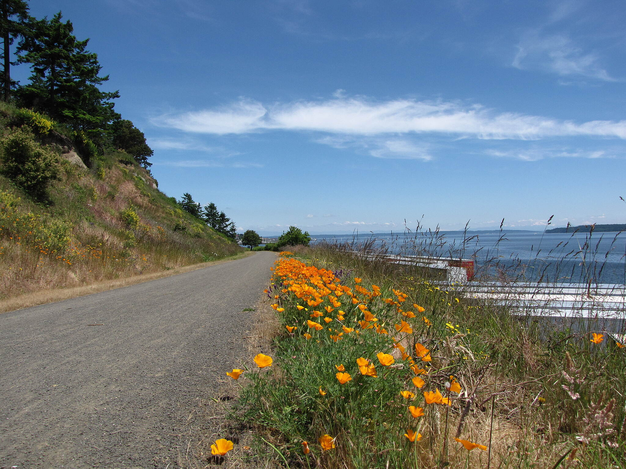 Olympic Discovery Trail East - Port Townsend Olympic Discovery Trail East