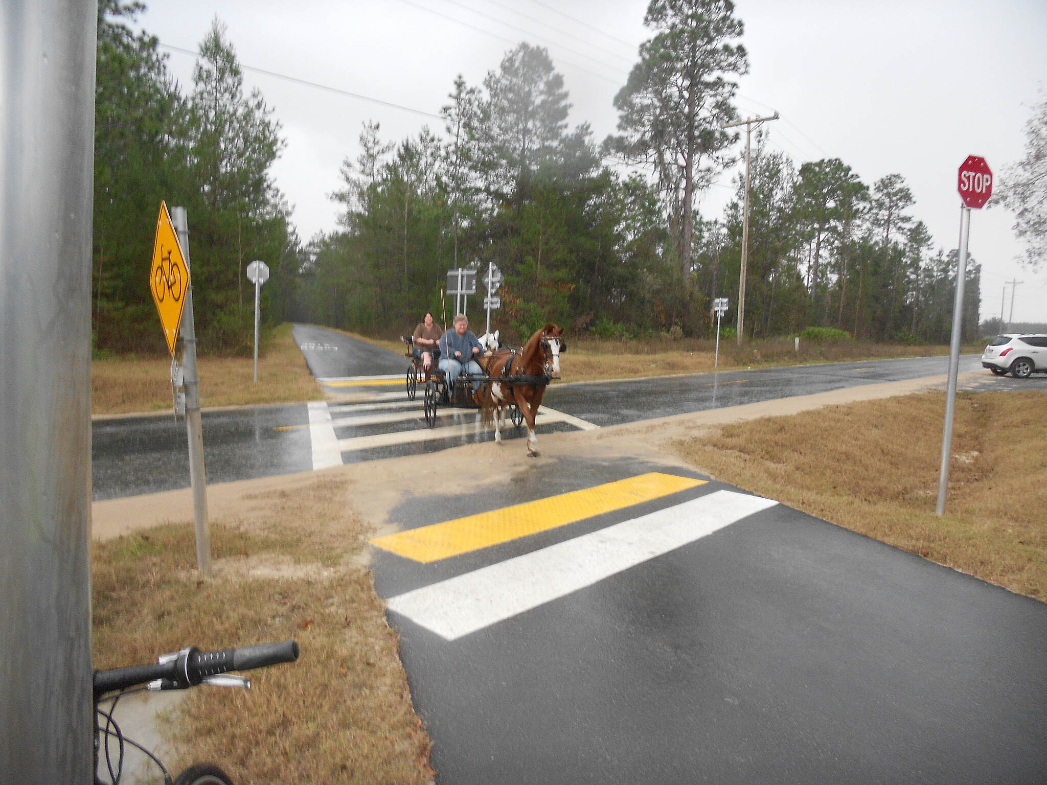 Palatka-Lake Butler State Trail Watchout for the Traffic Unexpected Bonus.
