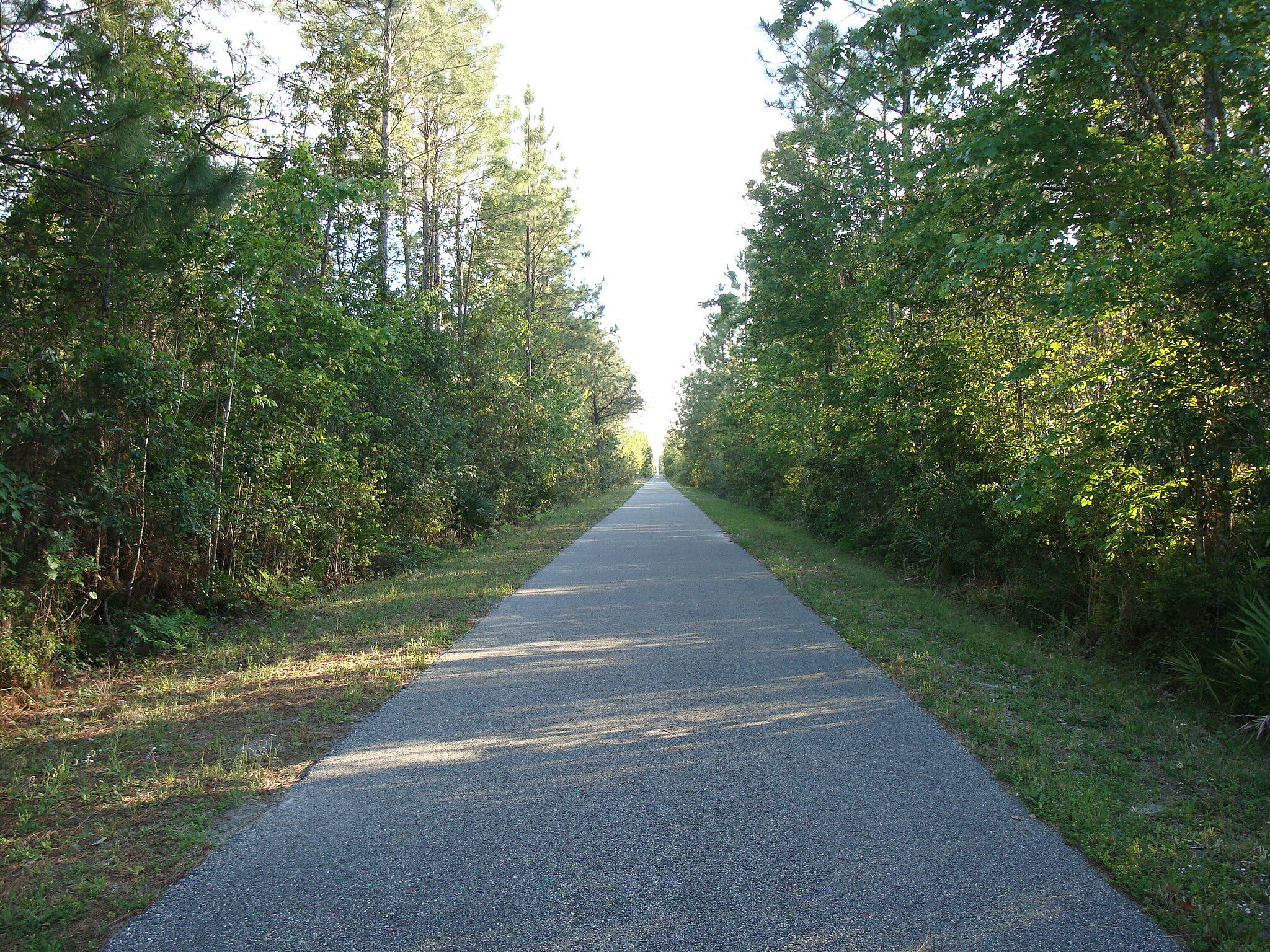 Palatka-to-St. Augustine State Trail Palatka - St. Augustine State Trail Straight and level.