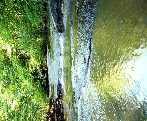 Papermill Trail Sabattus River Rapids A short walk down a side trail bring you to the river.