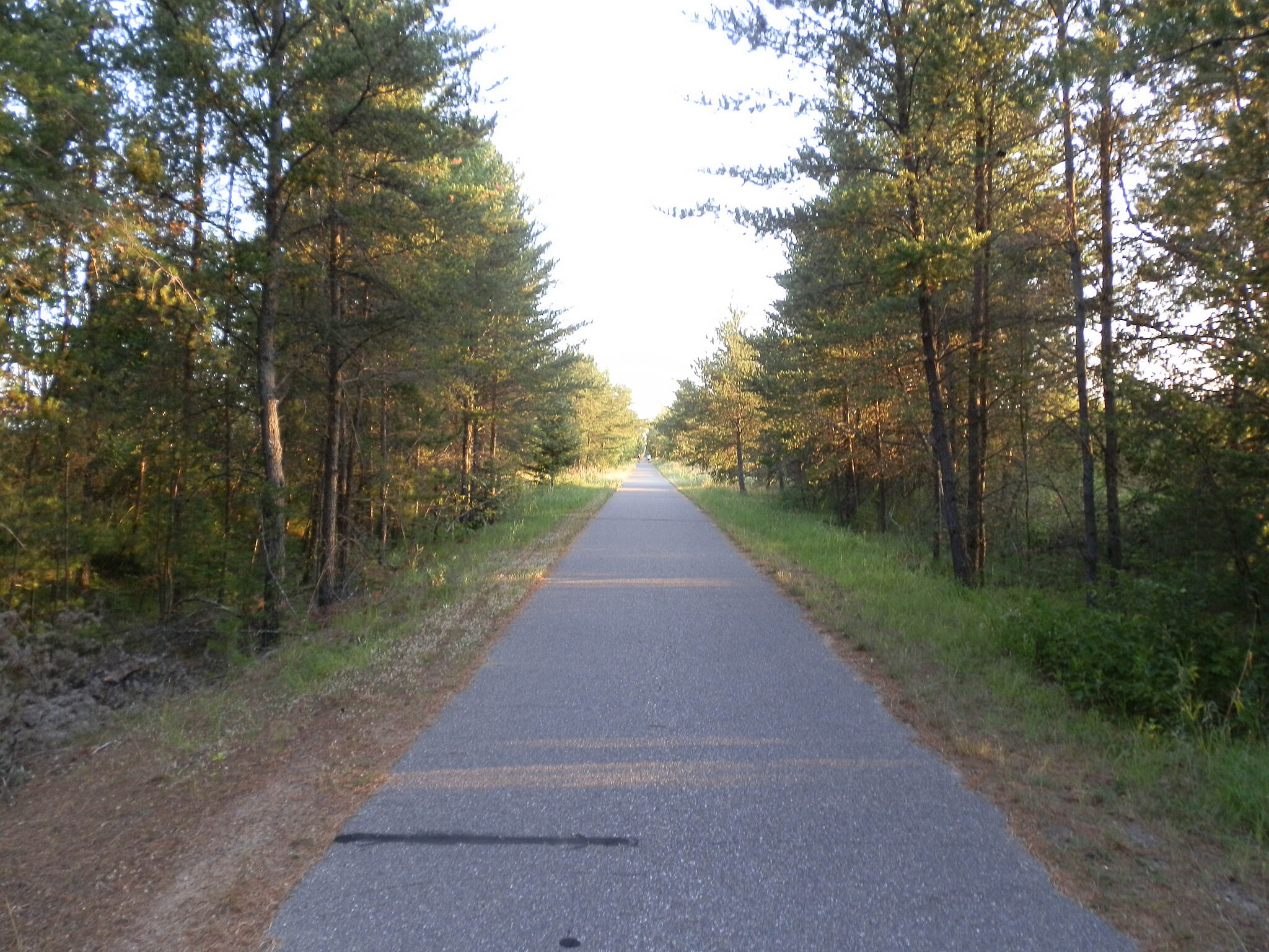 Paul Bunyan State Trail Trail south of Pequot Lakes August 2015 photo of trail in area where new MN 371 bypass will cross trail during 2016 and 17 construction.