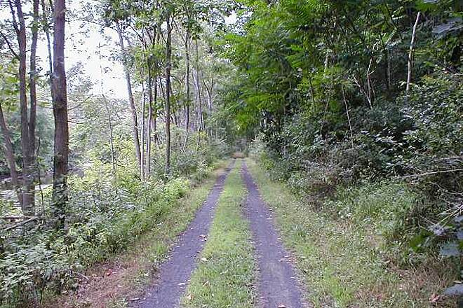 Paulinskill Valley Trail Double-tracked section of trail