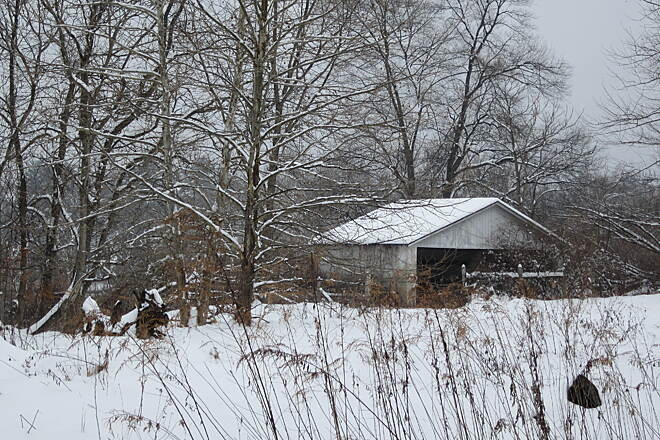 Paulinskill Valley Trail Snowy Shed