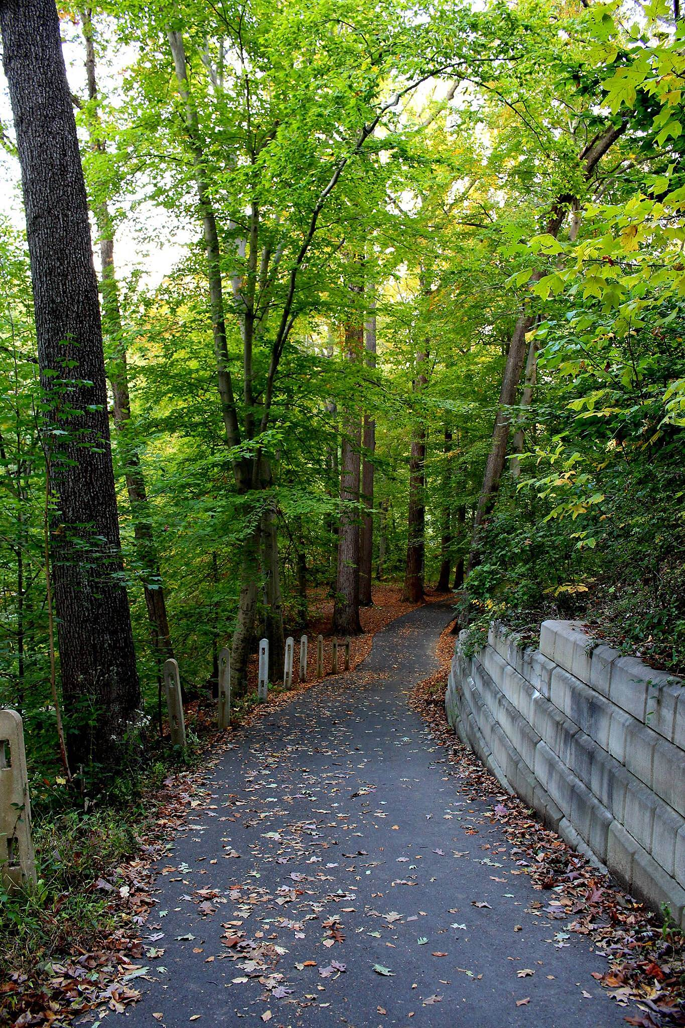 Pennypack Trail Path Beautiful scenery the further north you go