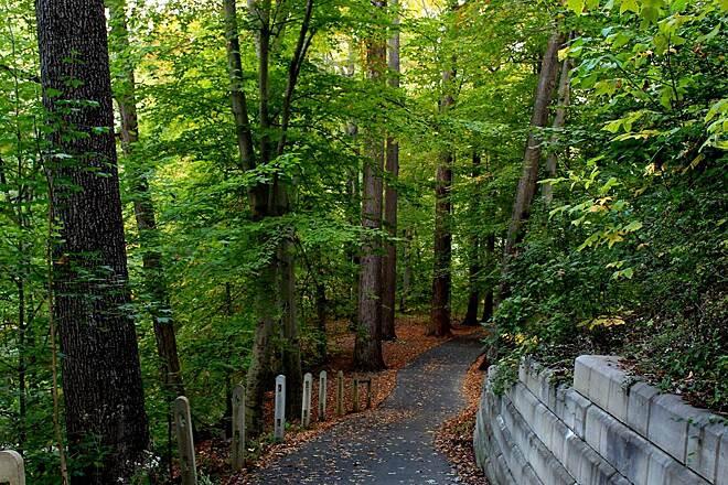 Pennypack Trail | Pennsylvania Trails | TrailLink