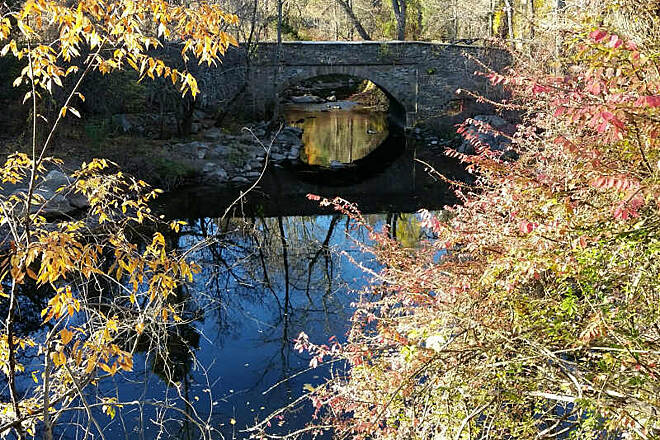 Pennypack Trail Still Waters Under The Bridge