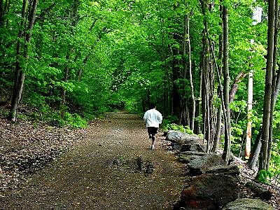 Pequonnock River Trail Housatonic Rail-Trail