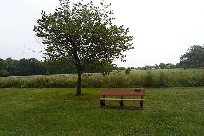 Perkiomen Trail Perkiomen Trail Park bench and tree in Lower Perkiomen County Park.