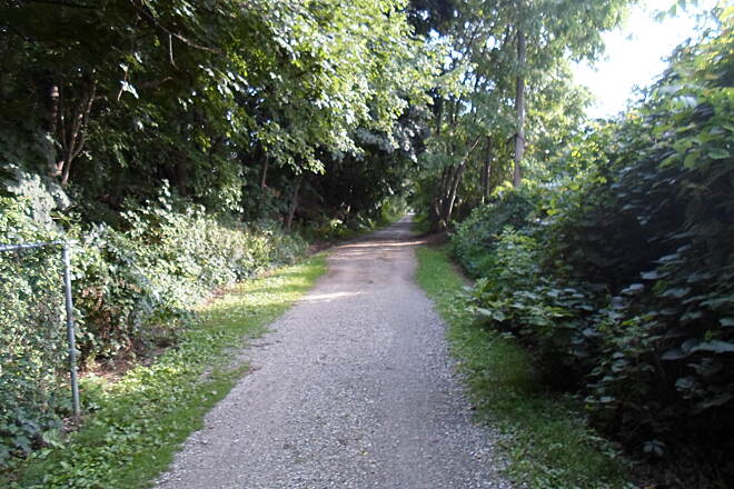 Perkiomen Trail Perkiomen Trail Wooded trail south of Collegeville. Taken July 2015.